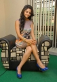 Vedhika Kumar Hot Leg Show Pics