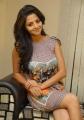 Vedhika Kumar Hot Pics