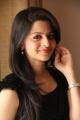 Vedhika Kumar in Black Dress Photo Shoot Stills