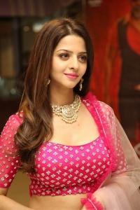Kanchana 3 Movie Actress Vedhika New Stills