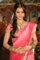 Vedika Latest Cute Saree Stills