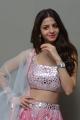 Actress Vedika Latest Stills @ Ruler Movie Success Meet