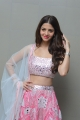 Actress Vedhika Latest Stills @ Ruler Movie Success Meet