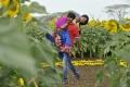 Ravi Teja Kajal Agarwal Veera Telugu Movie