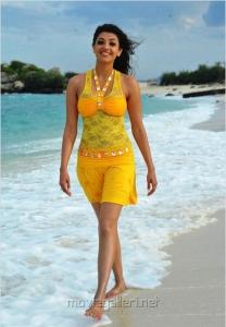 Kajal Agarwal Hot in Veeraiah Movie