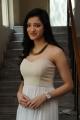 Actress Richa Panai @ Veerudokkade Audio Launch Stills