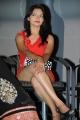 Actress Ashwini @ Veerudokkade Audio Launch Stills