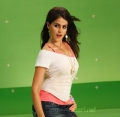 Velayutham Genelia Photos Stills