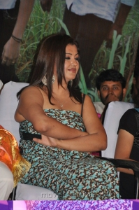 Actress Sona Hot Stills at Vellai Movie Audio Launch