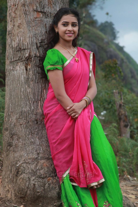 sri divya in vellaikara durai saree wwwpixsharkcom