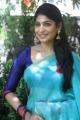 Vijayalakshmi @ Vennila Veedu Audio Launch Stills