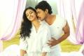 Ajmal Ameer, Radhika Apte in Vetri Selvan Movie Hot Photos