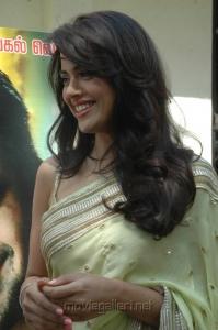 Sameera Reddy Hot Stills in Vettai Press Show