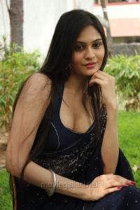 Actress Vibha Natarajan Spicy Hot Blue Saree Photos