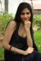Actress Vibha Natarajan Saree Hot Photos