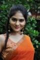 Vibha Natarajan in Orange Saree Hot Photos