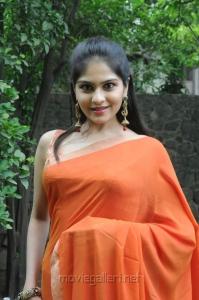 Vibha Natarajan Hot Pics in Orange Saree