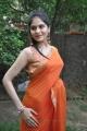 Vibha Natarajan Hot Photos in Orange Saree