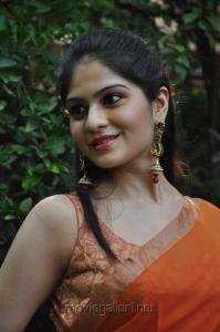 Actress Vibha Natarajan Hot Pics in Orange Saree