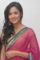 Devaraya Movie Actress Vidisha Sharma in Pink Saree Stills