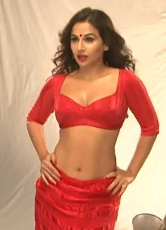 picture 83387 vidya balan hot photoshoot stills new movie posters