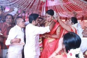Director Vijay and Actress Amala Paul Marriage Images