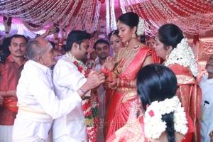 Director Vijay and Actress Amala Paul Wedding Images