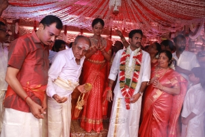 Actress Amala Paul and Director Vijay Wedding Photos