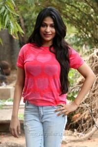 Actress Vijayalakshmi Hot Stills @ Pandigai Press Meet