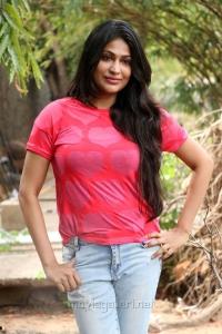 Actress Vijayalakshmi New Stills @ Pandigai Press Meet