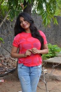 Actress Vijayalakshmi Agathiyan New Stills @ Pandigai Press Meet