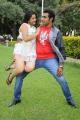 Swetha Basu Prasad, Taraka Ratna in Vijetha Movie Photos