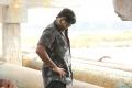 Vikram Vedha Movie Vijay Sethupathi Images