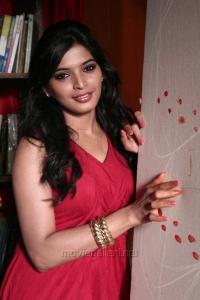 Actress Sanchita Shetty in Villa (Pizza 2) Telugu Movie Stills