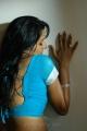 Vimala Raman Hot Saree Stills