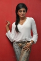 Actress Vimala Raman New Pics in White Dress