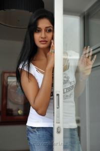 Vimala Raman Hot Photo Shoot Pics