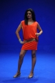 Vimala Raman Hot Photoshoot Pics