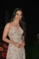 Actress Kiara Advani @ Vinaya Vidheya Rama Pre Release Photos