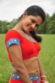 Vinura Vema Telugu Movie Actress Stills