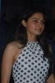 Actress Andrea Jeremiah at Virattu Audio Launch Photos