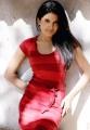 Actress Vishakha Singh Latest Photoshoot Stills