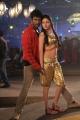 Vishal Sada Hot Item Song Stills in Madha Gaja Raja