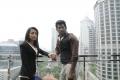 Vishal, Trisha Photos in Samar Movie