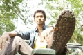 Vishal in Samar Movie Stills