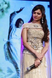 Actress Pooja Kumar at Vishwaroopam Audio Launch Photos