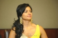 Pooja Kumar at Viswaroopam DTH Launch Hyderabad Photos