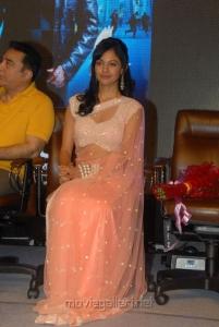 Pooja Kumar at Viswaroopam Telugu Movie Audio Launch Pictures