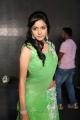 Vithika Sheru Hot Images @ Prema Ishq Kadhal Audio Release