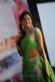 Vithika Sheru Hot Images @ Prema Ishq Kadhal Audio Launch